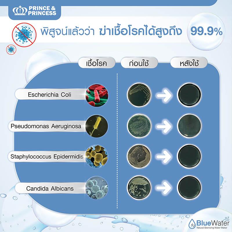 ผลวิจัย Blue Water ฆ่าเชื้อโรค 99.9%